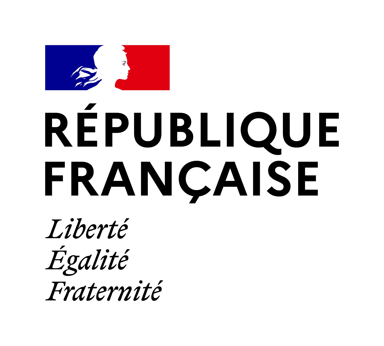 icône Gouv_fr