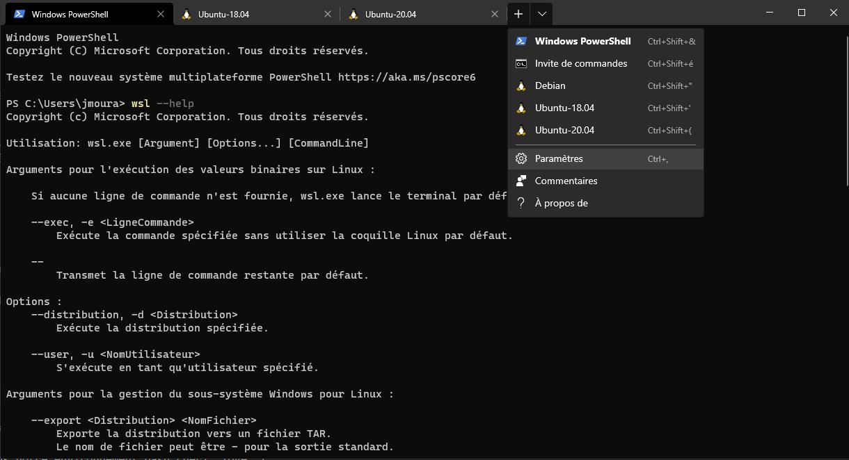 Onglets WSL dans Windows Terminal